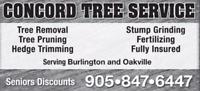 BURLINGTON - TREE SERVICE - 905-847-6447