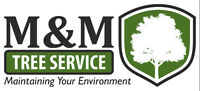 M & M Tree Service - The Tree People