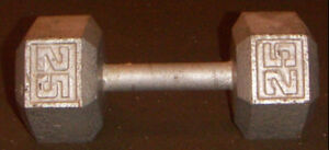 25 pound barbell weight
