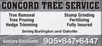 TREE REMOVAL / PRUNING / STUMPING / OAKVILLE  905-847-6447