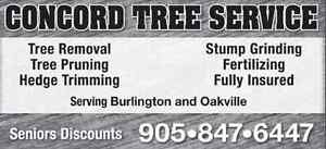 TREE SERVICES / PRUNING / STUMPING / REMOVALS
