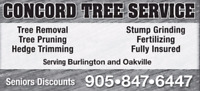 BURLINGTON - TREE SERVICE - 905-847-6447