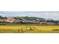 Au pair needed in lovely town near Chichester and the coast.
