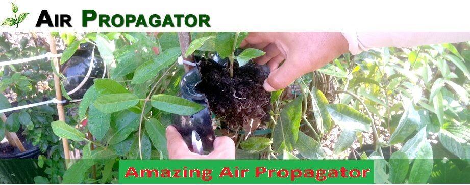 Air Propagator