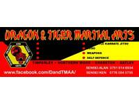Dragon and Tiger Martial Arts