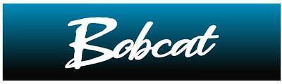 Miller Electric Welder Bobcat 225 Nt Decals1-pair Brand New