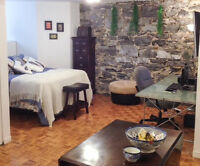 Nice Studio downtown Montreal to rent by the week in June
