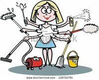 European experienced cleaning lady-Sherwood park and Fort. Sask