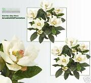 Artificial Magnolia Flowers