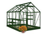 8x6 Green Halls Popular Greenhouse - Horticultural Glass