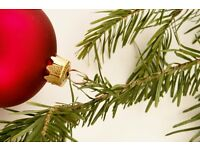 ***PAY FOR CHRISTMAS*** Full/Part Time HomeWorking Opportunity
