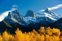 Cheap Place to Stay in the Mountains/ Vacation Rental in Canmore