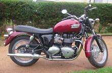 Triumph Bonneville - VERY LOW KMS - NEAR NEW Toowoomba Region Preview