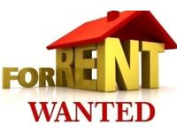 House or flat to rent WANTED!