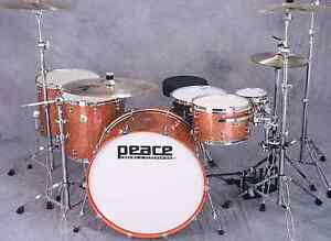 Peace paragon stage 1 drums