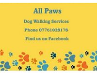 ''All Paws'' Dog Walking Services