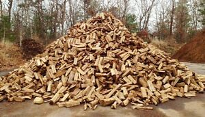 Firewood split and delivered 100$ a truck load