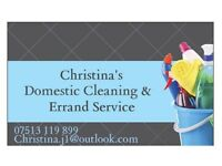 Professional Domestic Cleaning and Errand Service