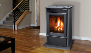 Free standing Gas Stoves Pacific Energy and Enviro
