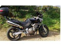 Beautiful black Honda hornet for sale