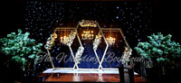 LUXURY EXCLUSIVE WEDDING RECEPTION BACKDROPS