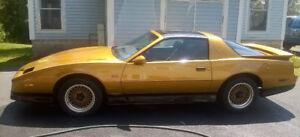 ANTIQUE - 1989 Pontiac Trans Am GTA (Collectors Car)