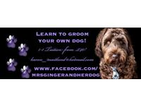 1-1 Grooming Tuition! Learn to groom your own dog!