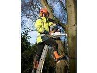 Tree surgeri cuttingtree remove garden clearencesfence repairs and new fences