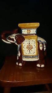 Elephant .. Glazed Campbelltown Campbelltown Area Preview