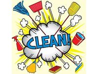 PROFESSIONAL CLEANING AND IRONING SERVICES