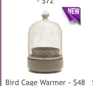 Scents Warmer