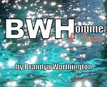 BWH by Brandyn Worthington