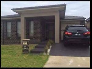 Room Share In Ropes Crossing Lethbridge Park Blacktown Area Preview