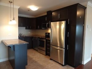 Executive 2 Bedroom Condo, Utilities Included