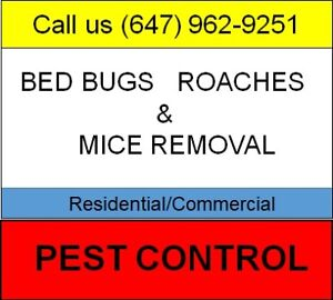 LOWEST PRICE BEST RESULTS ★ 647-962-9251 ★ MICE, ROACHES, BEDBUG