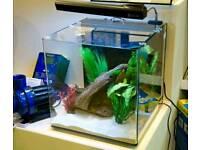 Aquaone nano 40 aquarium