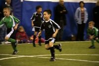 Soccer, ball hockey, volleyball and basketball. Book now!