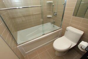 Bathroom Renovation ,Remodeling , Repair, Replace