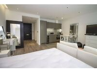 Furnished studio apartment 1 bathroom, private terrace, 24 hour concierge service, transport links