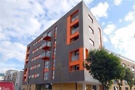Stunning 2 bedroom flat for rent - Call to arrange a viewing 07825214488