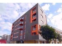 Superb 1 bedroom flat on Devons Road - Call 07488702677