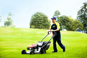 Lawn Maintenance Weekly or Bi Weekly Lawn Cuts Yard Cleanups! Windsor Region Ontario image 1