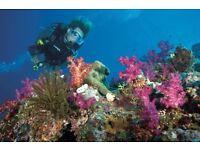 Scuba Diving trip to Hurghada 22 April
