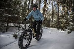 want to buy a Fat Tire Bike - able to do minor repairs
