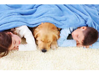 Local Carpet Cleaner*FREE Rug or Room cleaning*50% Off Sofa cleaning with house carpet cleaning*