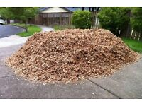 Free Wood Chip / Mulch with local delivery