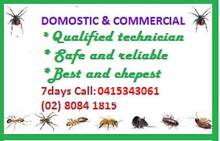 Pest Control Management Lakemba Canterbury Area Preview