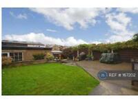 3 bedroom house in Knox Avenue, Harrogate, HG1 (3 bed)