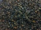 Autumn Clay Bulk Seeds