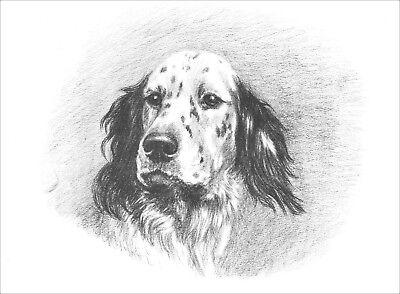 English Setter Dog Portrait Marguerite Kirmse 1920s LARGE New Blank Note Cards  ()